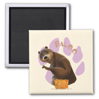 Baloo 1 2 inch square magnet