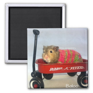 Baloo in his Red Wagon 2 Inch Square Magnet