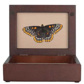 Baltimore Checkerspot Butterfly Memory Box