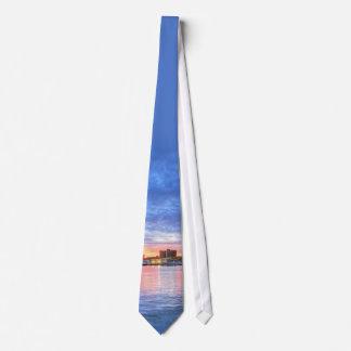 Baltimore City's Inner Harbor Tie