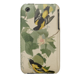 Baltimore Oriole iPhone 3 Cover