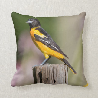 Baltimore Oriole female in flower garden Throw Pillow