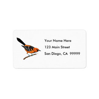 Baltimore Oriole on a Twig Label