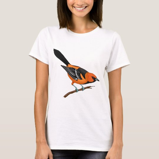 Baltimore Oriole on a Twig T-Shirt