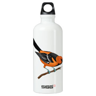 Baltimore Oriole on a Twig Water Bottle