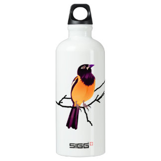 Baltimore Oriole on Twig Aluminum Water Bottle