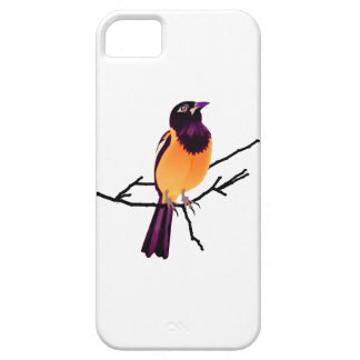 Baltimore Oriole on Twig iPhone 5 Cover