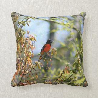 Baltimore Oriole Pillow