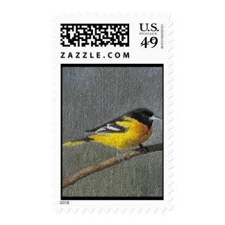 Baltimore Oriole Postage Stamps