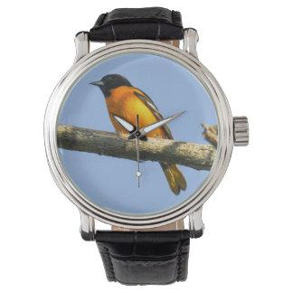 Baltimore Oriole Relojes De Mano