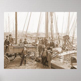 Baltimore Oyster Harvest 1905 Poster