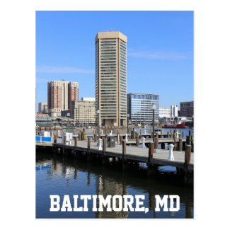 Baltimore's Inner Harbor World Trade Center Photo Postcard