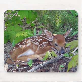 Bambi the baby roe-deer mouse pad