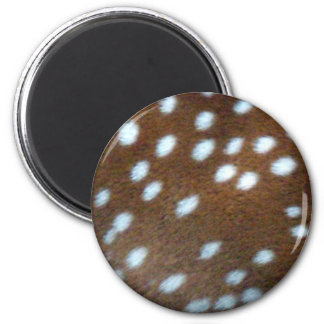 Bambi white dots on brown fur 2 inch round magnet
