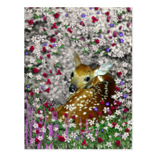Bambina the White-Tailed Fawn in Flowers I Postcard