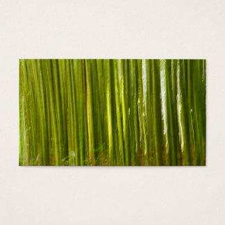 Bamboo abstract business card