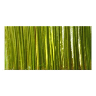 Bamboo abstract card