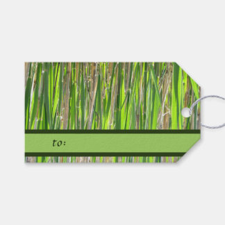 Bamboo Against the Sun Gift Tags
