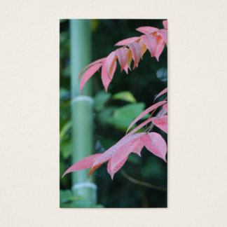 Bamboo and Leaves. Business Card