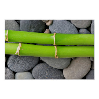 Bamboo and pebble poster