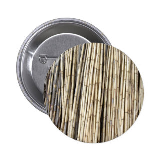 Bamboo background pinback button