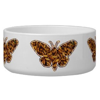 Bamboo Borer Moth Life Cycle Silhouette Bowl