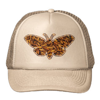 Bamboo Borer Moth Life Cycle Silhouette Hats