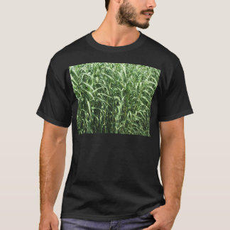Bamboo cane trees as a background T-Shirt