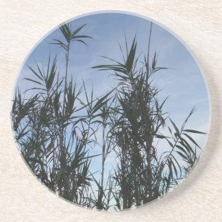 Bamboo Beverage Coaster