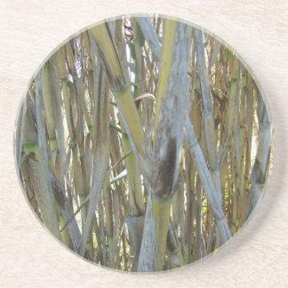 Bamboo Drink Coasters