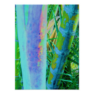 Bamboo Color Poster