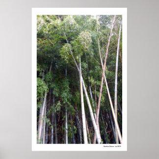Bamboo Dance Poster