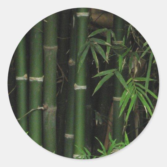 Bamboo ... Fao Rai, Nong Khai, Isaan, Thailand Classic Round Sticker