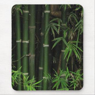 Bamboo ... Fao Rai, Nong Khai, Isaan, Thailand Mouse Mats