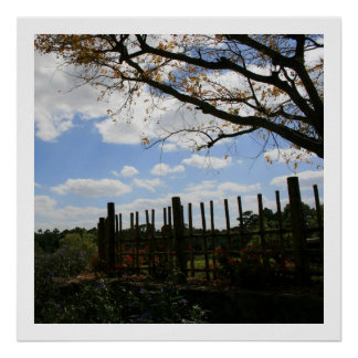Bamboo Fence Square Size Poster