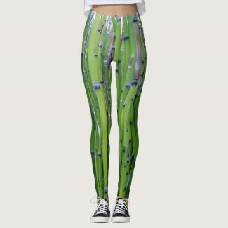Bamboo Field Leggings