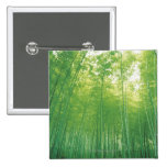 Bamboo Forest 2 Pinback Button