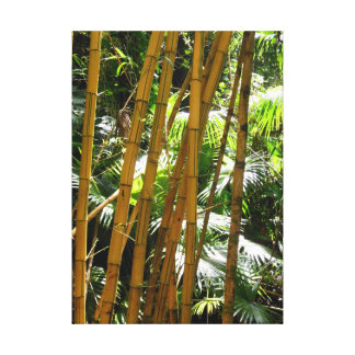Bamboo Forest Stretched Canvas Print