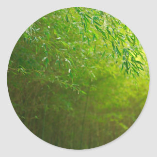 Bamboo forest classic round sticker
