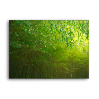 Bamboo forest envelope