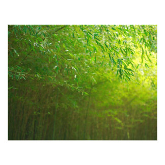 Bamboo forest flyer