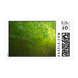 Bamboo forest postage