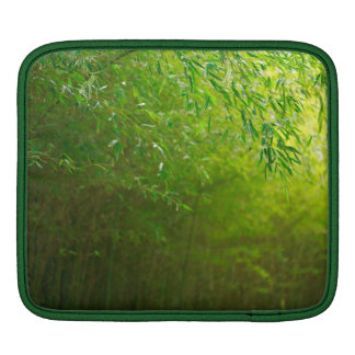 Bamboo forest sleeve for iPads