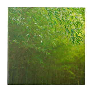 Bamboo forest tile