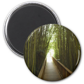 Bamboo Forest  Trail 2 Inch Round Magnet