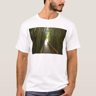 Bamboo Forest  Trail T-Shirt