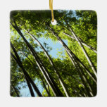 Bamboo Green Forest Nature Photography Ceramic Ornament