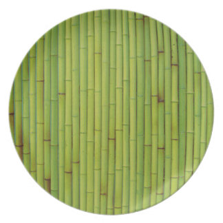 Bamboo-Green Party Plates