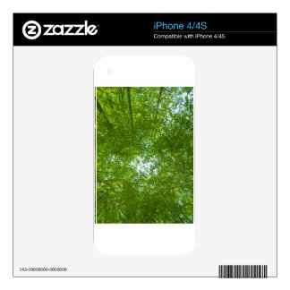 bamboo iPhone 4 skin