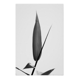 Bamboo leaves in black and white print